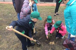 Экологическая акции «Лес Победы»